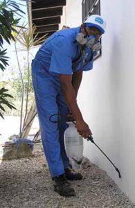 شركة رش مبيدات حشرية بالدمام