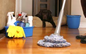شركة تنظيف المنازل بالاحساء